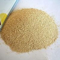 Yeast powder,500g bakery instant yeast -