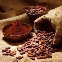 Cocoa powder -