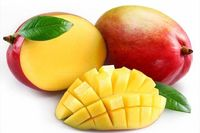 Mango - Pulp, Cconcentrate, Clarified, Conventional or Organic, Frozen Integral -