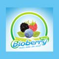 Bioberry Brasil