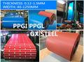 steel,ppgi,ppgl, gi,gl,prepainted steel coil, color coated coil,galvanized steel