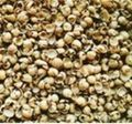 Soy Husks For Animal Feed