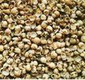 Cascas de soja para a alimentação animal