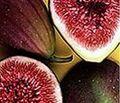 巴西水果出口
