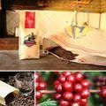 Terrazu Gourmet Coffee - 1kg Whole Roasted Beans