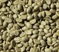 Cafe Arabica NY 2/3
