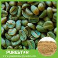Extrato de feijão de café verde ácido clorogénico