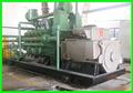 certificado por la CE el mini planta de biogás biogás precio generador eléctrico
