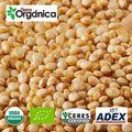 Quinoa orgánica / convencional
