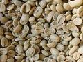 Café Verde y Café Tostado Amazonito Premium -