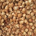 coconut Shell, Plantain, Peanut