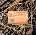 Wood business cards -