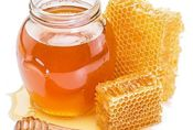 Honey and propolis