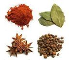 Spices - Hervaquimica Natural Products