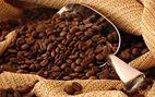 Café Arábigo