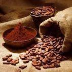 Cocoa powder - shilloh cocoa traders