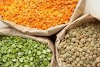 Lentils - All Colors Available