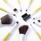 12-piece Dreammaker cosmetic brush