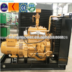 Mini power plant AC Three Phase biogas Generating Set - shandong lvhuan power equipment co., ltd
