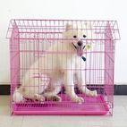 jaula del animal doméstico espesó