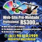 创建专业网站