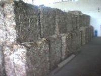 Dried Cattle Hide Splits -