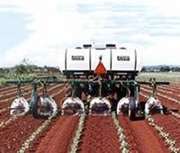 Chemical Grower -