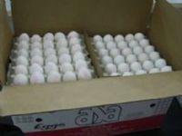 Frescos ovos de mesa -