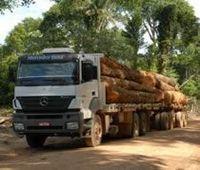 Productos de madera -