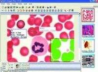 Scientific Softwares: Educational, Biological And Industrial. -