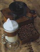 Café Verde Robusta -