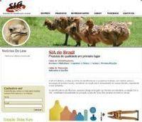 Identificadores visuais e eletrônicos para animais -