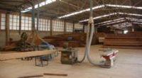 Catarinense Wood -