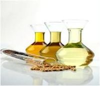 Vegetable Oils And Derivatives -