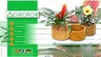 Vasos ecológicos, plantadores e arandelas de parede para Plantas -