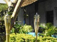 Outdoor Torches -