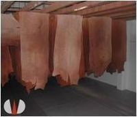 Finished Leather For Sole, Belts And Other Goods -