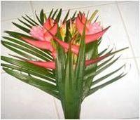Flores Frescas e Bouquets -