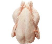 Halal Chicken -