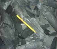 Eucalipto del carbón de leña para uso doméstico -
