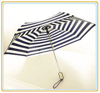 Folding Umbrella -
