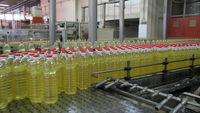 SUNFLOWER OIL -
