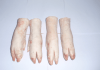frozen  front  pork feet  ,   frozen pork back hind , frozen  beef  parts -