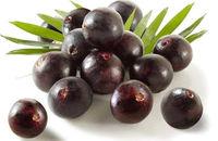 Açaí - Pulp, Clarified, Conventional or Organic -