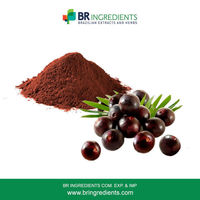 Acai Berry Powder -