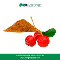 Acerola Powder -