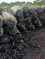 Madera dura del carbón de leña -