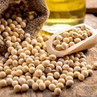 SOJA GMO GRADE 2 -