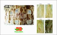 西萨尔纤维 -