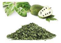 Chá de Graviola -